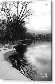 Winter Tree Reflection - Black And White Acrylic Print by Carol Groenen