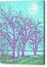 Acrylic Print featuring the digital art Winter Trees In Moonlight Blue - Boulder County Colorado by Joel Bruce Wallach