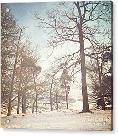 Acrylic Print featuring the photograph Winter Trees by Lyn Randle