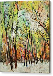 Winter Trees Acrylic Print by Michael Creese