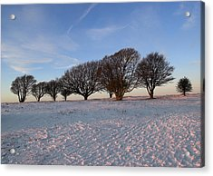 Winter Trees On The Ring Acrylic Print