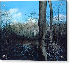 Winter Trees Acrylic Print by William  Brody