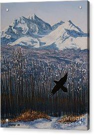 Winter Valley Raven Acrylic Print by Stanza Widen