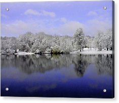 Winter View Acrylic Print by Karol Livote