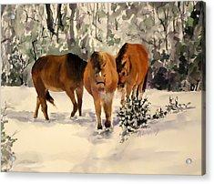Winter Walk Acrylic Print by Andrea Birdsey Kelly