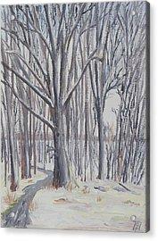 Winter Walk Acrylic Print by Robert P Hedden