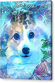 Acrylic Print featuring the digital art Winter Welsh Corgi by Kathy Kelly