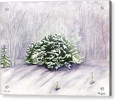 Acrylic Print featuring the painting Winter Wind by Melly Terpening