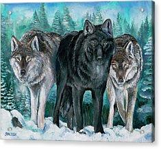 Winter Wolves Acrylic Print