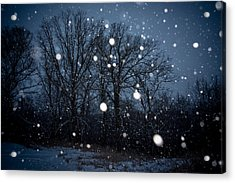 Winter Wonder Acrylic Print by Annette Berglund
