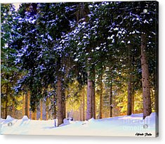 Winter Wonder Acrylic Print