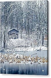 Winter Wonderland 1 Acrylic Print