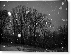 Winter Wonderland Acrylic Print by Annette Berglund