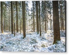Acrylic Print featuring the photograph Winter Wonderland by Hannes Cmarits