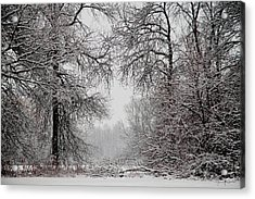 Winter Wonderland II Acrylic Print