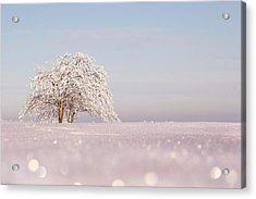 Winter Wonderland Acrylic Print by Roeselien Raimond