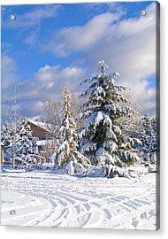 Winter Wonderland Acrylic Print by Wilbur Young