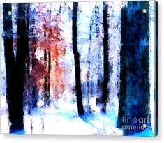 Winter Woods Acrylic Print