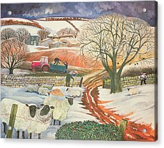 Winter Woolies Acrylic Print by Lisa Graa Jensen