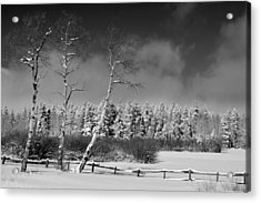 Acrylic Print featuring the photograph Winters Allure.. by Al Swasey