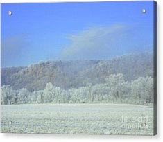 Winter's An Etching... Acrylic Print