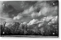 Winter's Arrival Acrylic Print