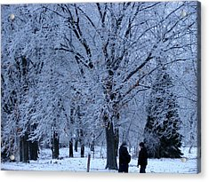 Winters Beauty Acrylic Print by Dave Clark
