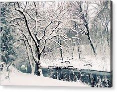 Winter's Charm Acrylic Print by Jessica Jenney