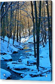 Winter's Cold Touch Acrylic Print