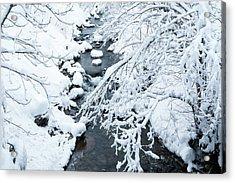 Winters Creek- Acrylic Print