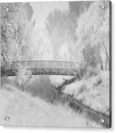 Winter's Dream Acrylic Print