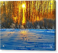 Winters Morning Acrylic Print by Robert Pearson