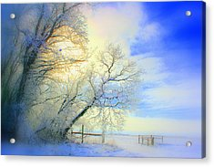 Winters Pretty Presents Acrylic Print by Julie Lueders