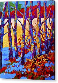 Winter's Promise Acrylic Print by Marion Rose