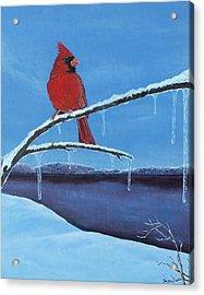 Winter's Red Acrylic Print