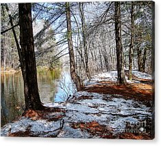 Winter's Remains Acrylic Print