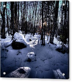 Acrylic Print featuring the photograph Winters Shadows by David Patterson