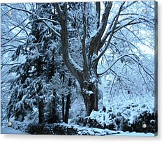 Winter's Touch Acrylic Print by Karen Moulder