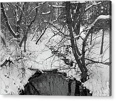 Acrylic Print featuring the photograph Winter's Touch by Scott Kingery
