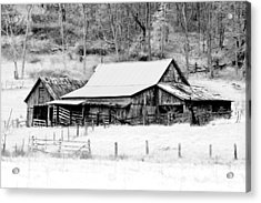 Winter's White Shroud Acrylic Print by Tom Mc Nemar