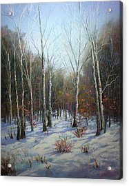 Winterscape Acrylic Print by Paula Ann Ford