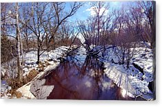 Wintertime In Necedah  Acrylic Print by Ricky L Jones