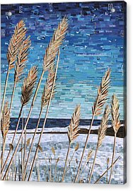 Wintertime On Lake Erie Acrylic Print by Shawna Rowe