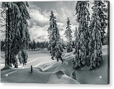 Winter Wonderland Harz In Monochrome Acrylic Print by Andreas Levi