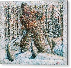 Winterwoods Acrylic Print by Jim Rehlin