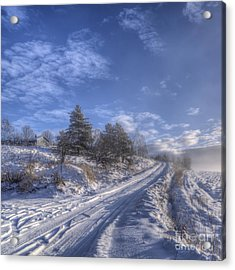 Wintry Road Acrylic Print by Veikko Suikkanen