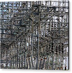 Wired Acrylic Print by Robert Pearson