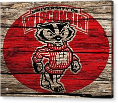 Wisconsin Badgers Barn Door Acrylic Print