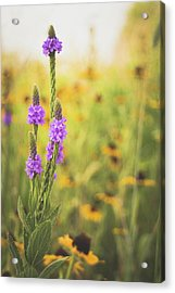 Wisconsin In July Acrylic Print