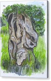 Wisdom Olive Tree Acrylic Print